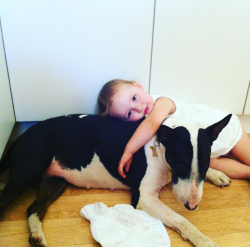 Adorable little girl cuddling with her dog