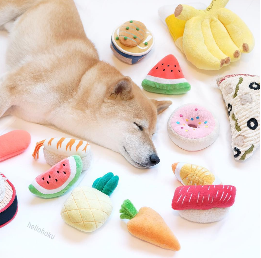 dog lounging with food - @hellohoku