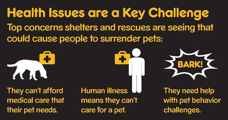 Graphic showing that top reason people might surrender pets are medical costs for pets, human illness, or needing help with pet behavior