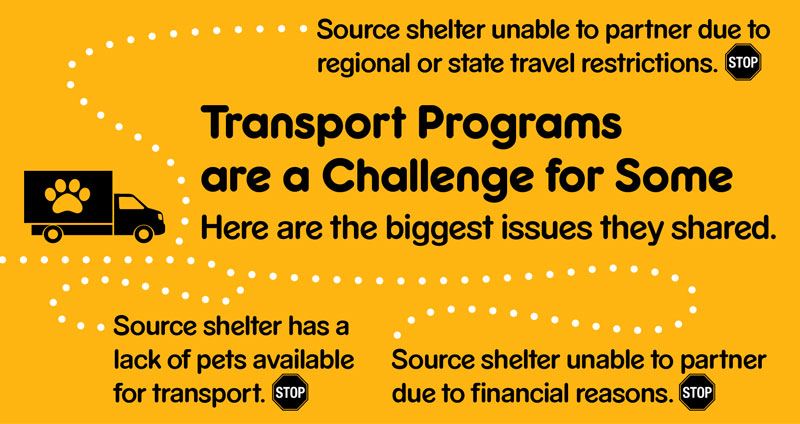 Graphic showing top issues challenging transport programs, like travel restrictions.