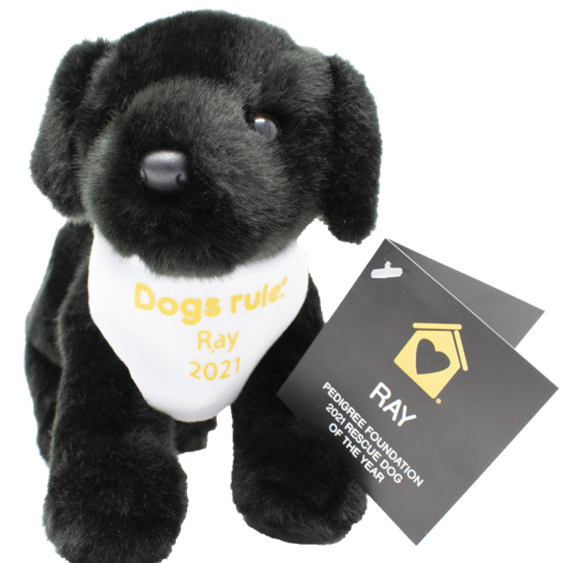 plush dog to commemorate Rescue Dog of the Year