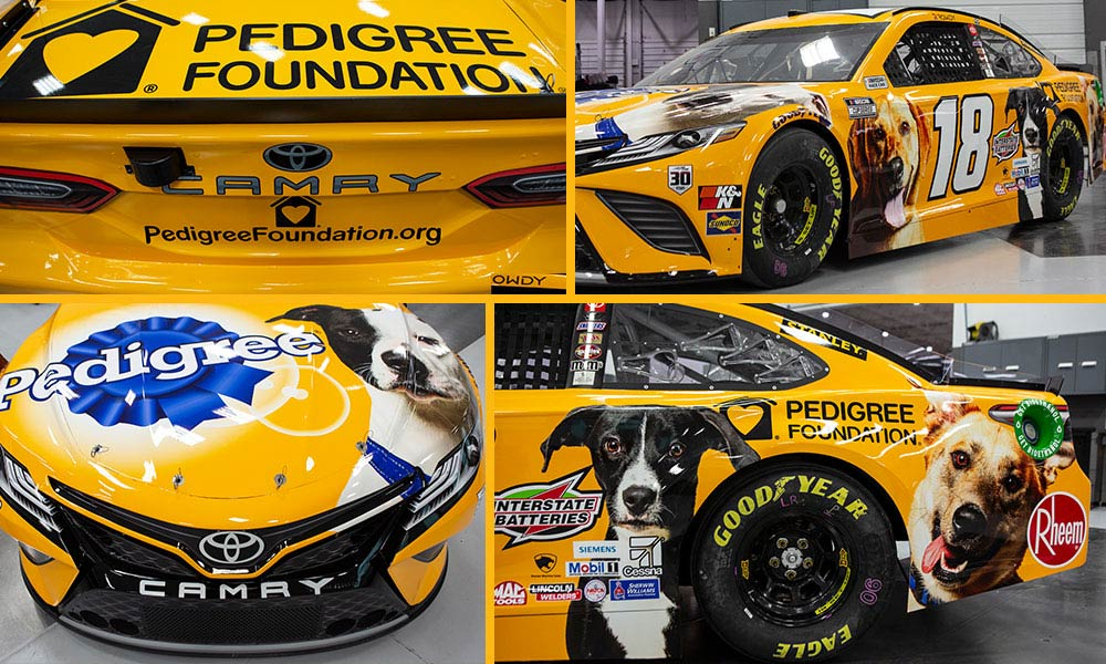 collage of photos of Kyle Busch No. 18 Toyota Camry with PEDIGREE Foundation logo and dog pictures