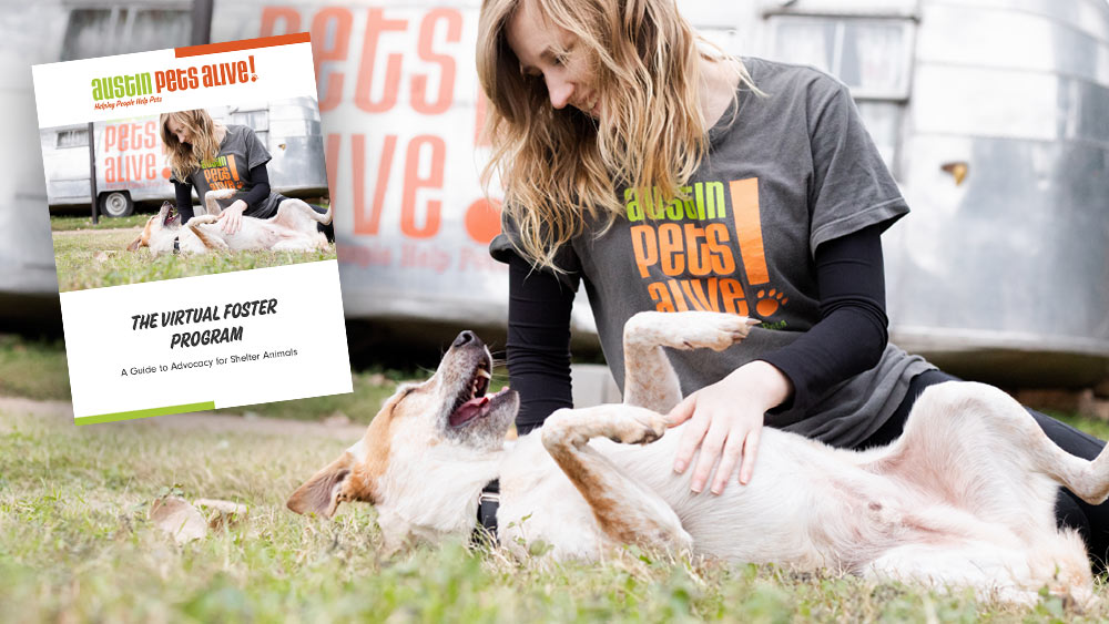 picture of handbook on photo of women and dog